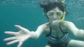石垣島にあるマリンサービスフリースタイル石垣島で撮影された動画です...