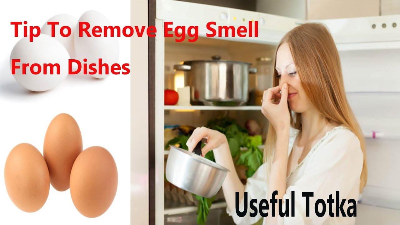 How To Get Rid of Egg Smell From Dishes (Useful Totka) | Bartan Se Ande Ki  Smell Khatam Karna | Tip