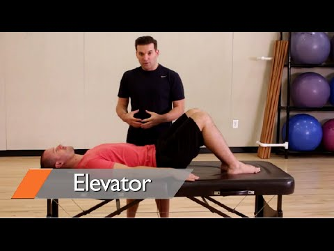 ab workouts for women at home in this video learn a new