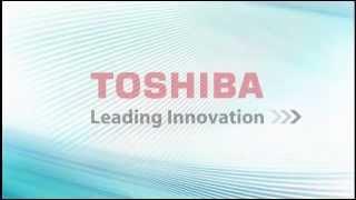 Toshiba VIPedge Personal Admin User Guide