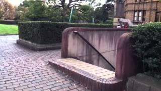 紹介せずにはいられない東京大学の赤門ラーメン〜東大ツアーしちゃうよっ!の巻〜