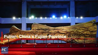 Giant wood carving from a 1,000-yr-old tree on display in Fujian