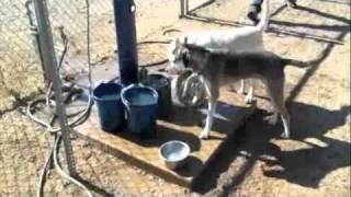 Source Of Arizona Drought Revealed