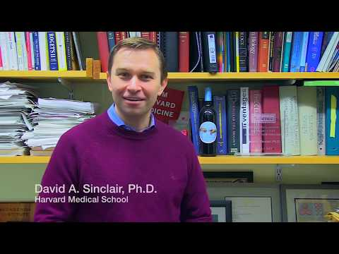 David Sinclair - Can NMN Reverse Aging?