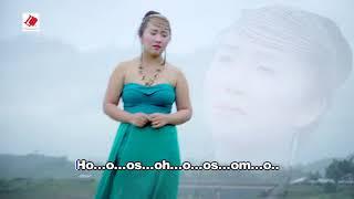 Linaj Thoj Ib Ntsais Muag Li Npau Suav Instrumental