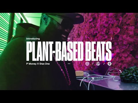 We made the WORLD'S FIRST PLANT-BASED GRIME TRACK with P Money and Star.One | #PlantBasedBeats