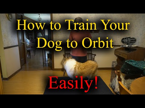Dog Tricks: Teaching a Dog to Orbit