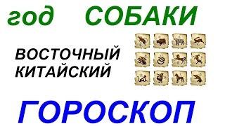 Год Собаки. Восточный гороскоп от психолога Натальи Кучеренко.