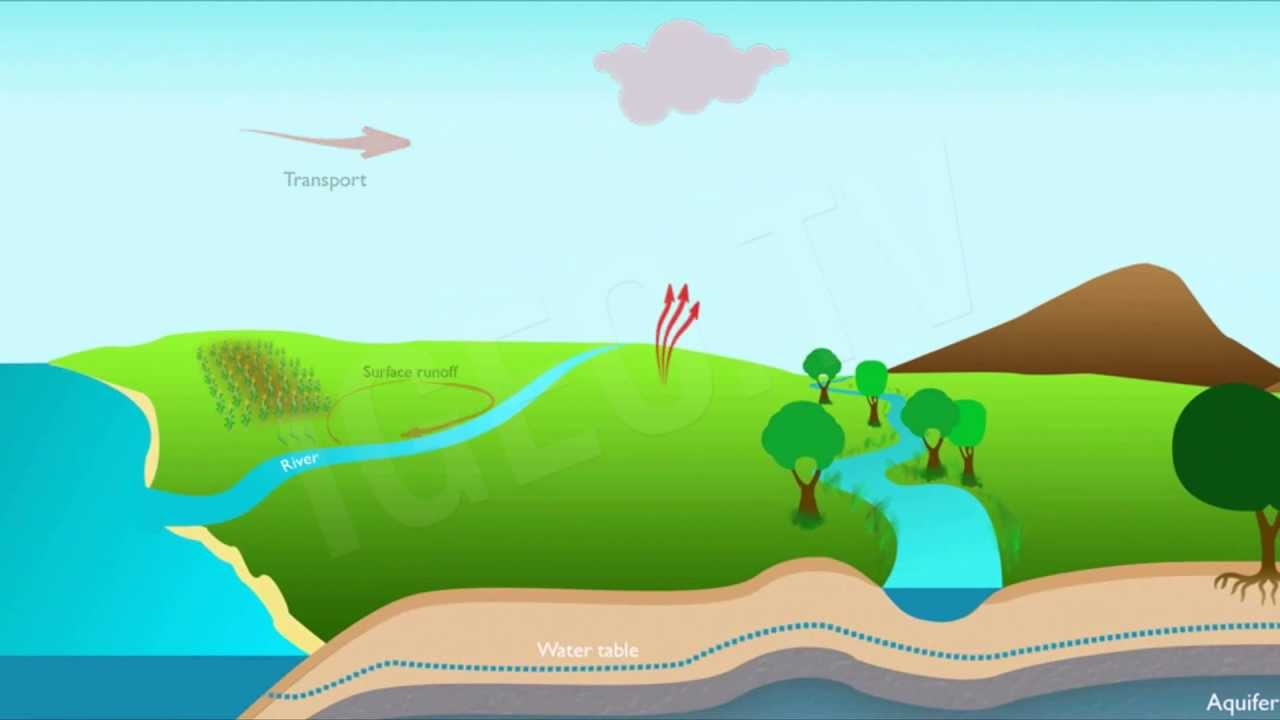 Ciclo del agua water cycle igeo tv youtube for Suelo organico dibujo animado