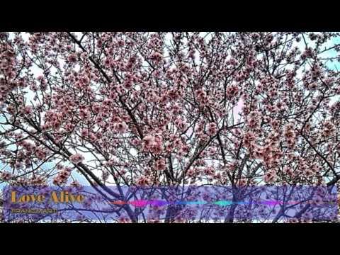 Franc Marti - LOVE ALIVE  ( Ambient Chillout Deep House & Mix )