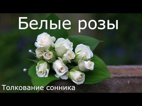 Белые розы - толкование сонника