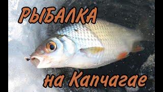 Рыбалка на голубом заливе Капчагая