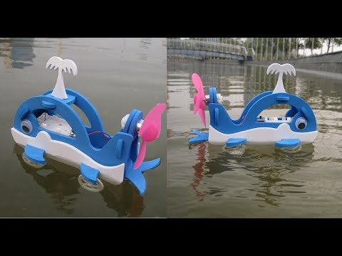 How To Make A Amphibious Wheel Whale Model For Kids - Children's Science Experiment Educational Toys