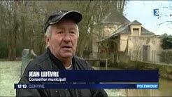 Des oies en liberté inquiètent les habitants de Neuvy-sur-Loire