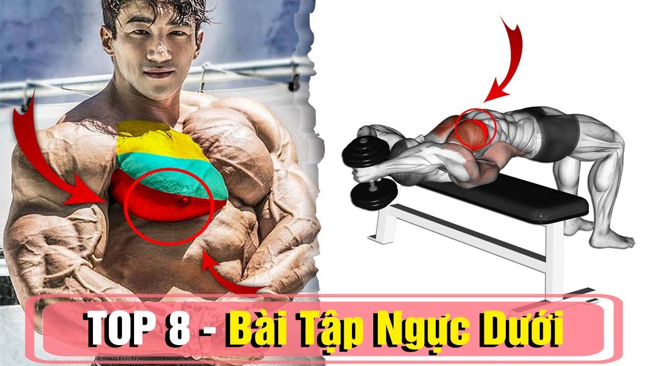 8 Bài Tập Ngực Dưới Giúp Cắt Nét Không Thể Bỏ Qua – Kiến Thức Gym