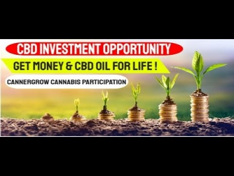 Best Companies To Invest In 2020.Best Cbd Companies To Invest In Best Stocks For 2019