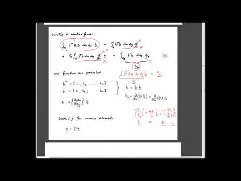 2:2 Conservation Equations and Galerkin Approximation
