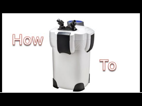 How To : Clean And Setup SunSun HW-303B Canister Filter