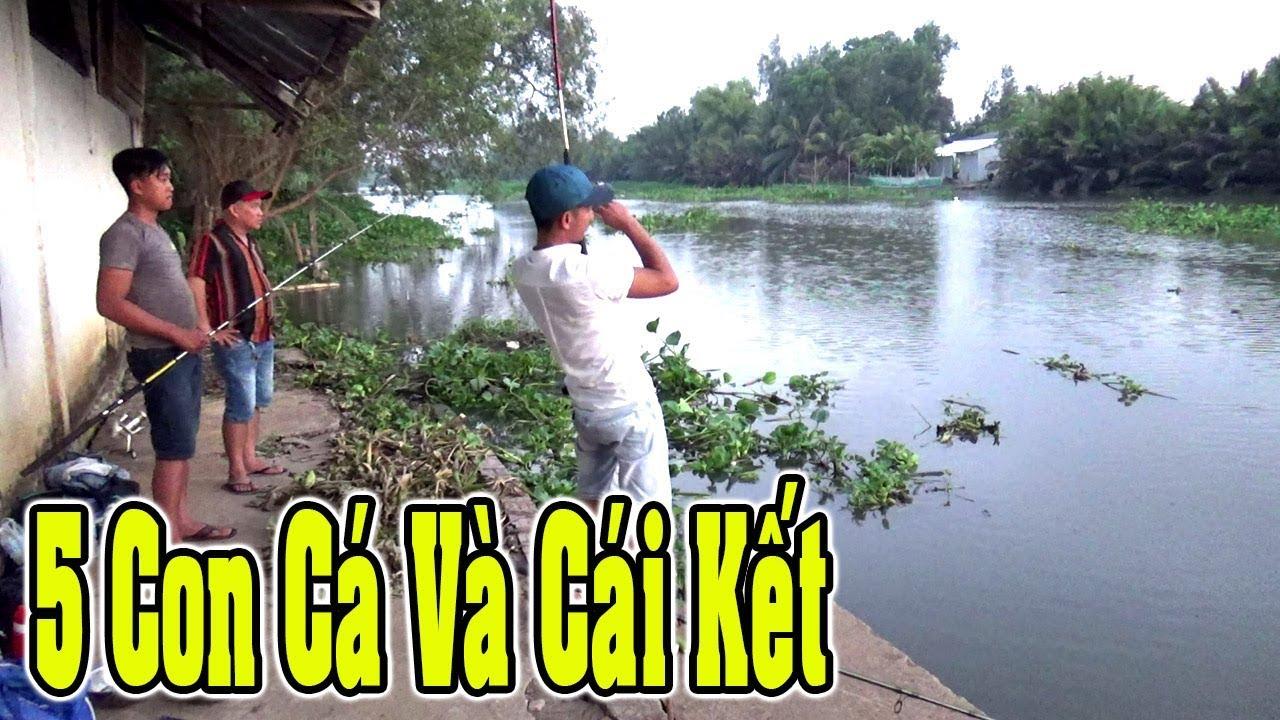 Câu cá tra sông mồi câu của thằng em siêu nhại 5 con cá lên bờ/Fishing/NGÃ NĂM TV