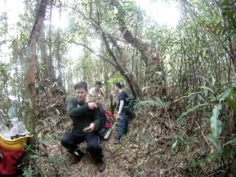 SKL - Hiking To Gunung Swettenham Water Point, Cameron Highland, Pahang, Malaysia. (Video-29)