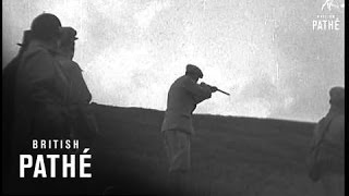 Scottish Kennel Club's Field Trials For Spaniels (1938)