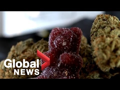 Highs And Lows Of Canada Legalizing Recreational Cannabis