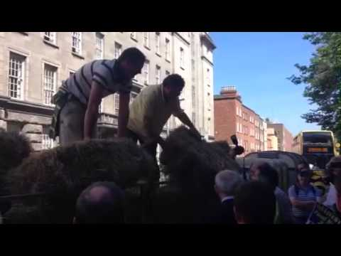 Irish Farmers Protest at Dept of Agriculture