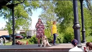 Танцы с собаками 17 06 2017 видео 059