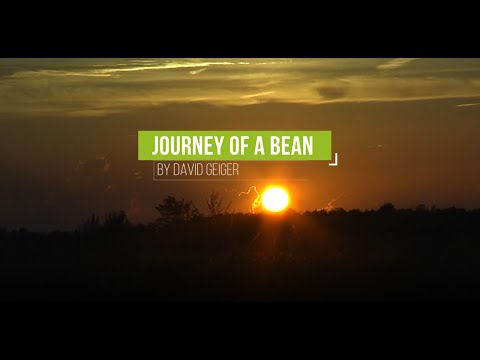 Journey of a Bean – (2019 Documentary)