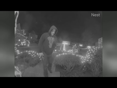Real-life Grinch Caught On Camera Snipping Christmas Lights From Local Yard