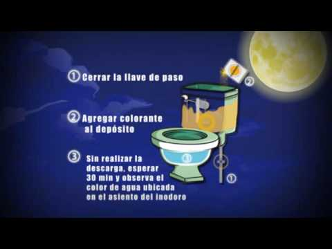 C mo detectar fugas de agua en el inodoro youtube for Fugas de agua madrid
