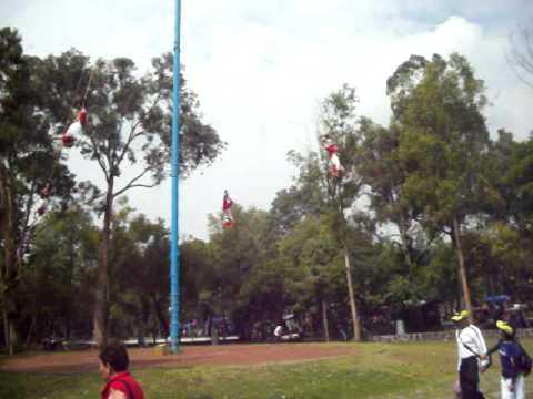 Totonacs of Papantla in Mexico. Junio 2011.