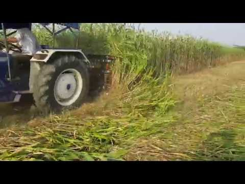 Reaper Machine - Crop reaping and cutting machine (makka,jwar,bajra,gehu,jou)