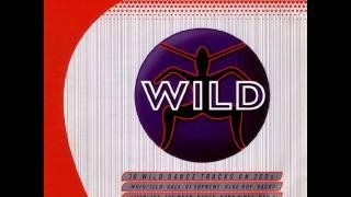 WILD FM VOLUME 2 - WILD SKITZ MEGAMIX (NICK SKITZ)