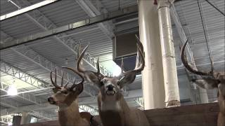 2014 Ohio Deer & Turkey Expo Why They Call Ohio The BUCKeye State Part I