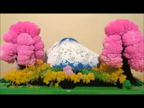 Magic Growing Garden Crystal Landscape - Time Lapse