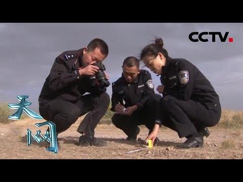 """《天网》""""案""""中有案:两起匪夷所思的交通事故 现场勘察疑点重重   CCTV社会与法"""