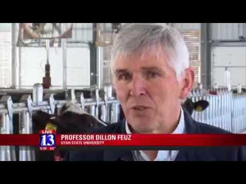 USU Extension Robotic Dairy Farm Debuts Cutting Edge Technology