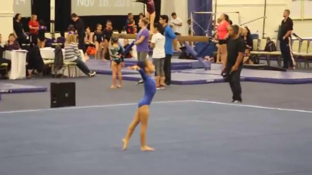 nc level 3 gymnastics meet