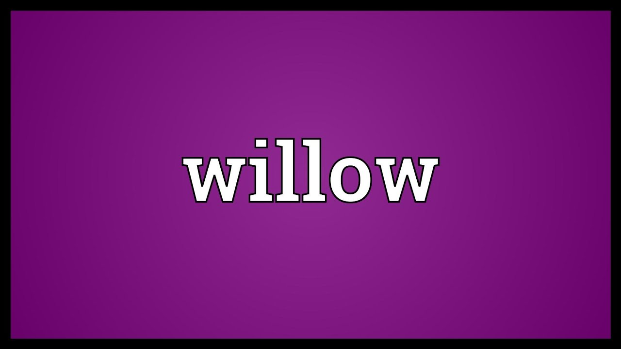 Willow meaning youtube willow meaning biocorpaavc Image collections