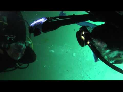 scuba diving: redondo beach-desmoines, wa