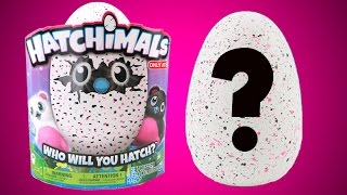 i bought a target exclusive hatchimal toy who s inside of my egg