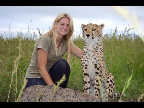 Top 5 Travel Tips: Wildlife Travel