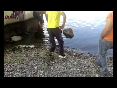 Thumbnail: Found bag w treasure ! while we were fishing, awsome day .......