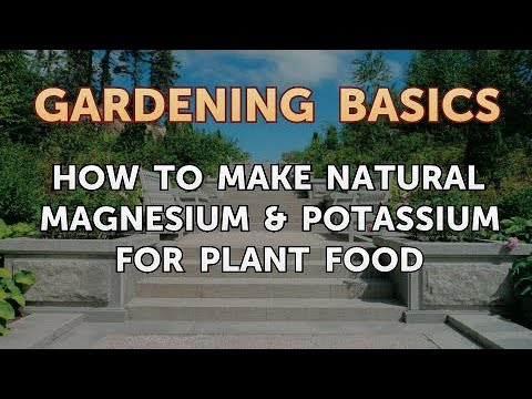 How To Make Natural Magnesium & Potassium For Plant Food