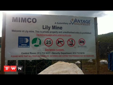 Lily Mine: A Forgotten Tragedy