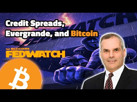 Valuing Bitcoin Using Sovereign Credit Default Swaps with Greg Foss - Fed Watch 66