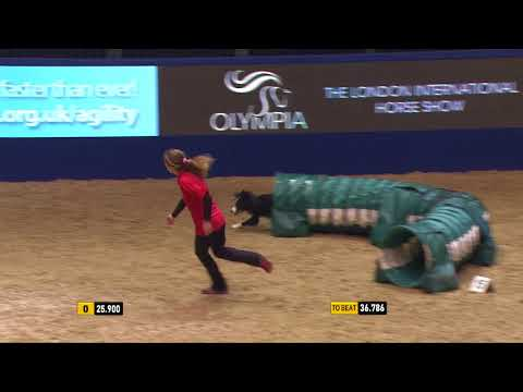 The Kennel Club Large Novice Dog Agility Finals at Olympia 2017
