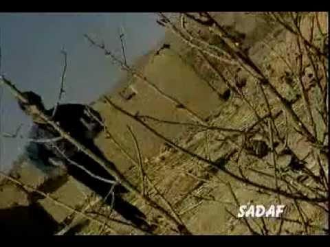Ali Baba Pakistani Pop 2001