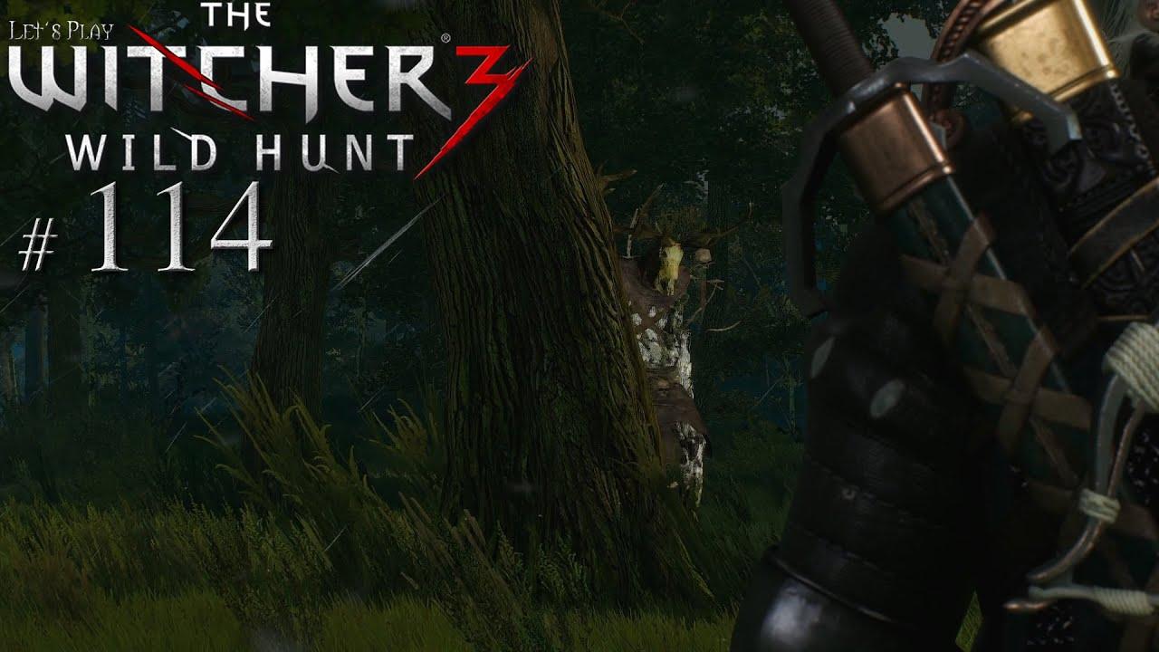 Zuverlässiger Freund Witcher 3